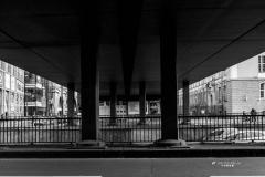 Luigi_Scaglione_Photogher_IMG_7030-Modifica